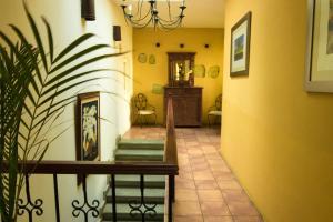 Hotel Casa Divina Oaxaca, Szállodák  Oaxaca de Juárez - big - 43