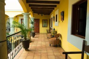 Hotel Casa Divina Oaxaca, Szállodák  Oaxaca de Juárez - big - 46