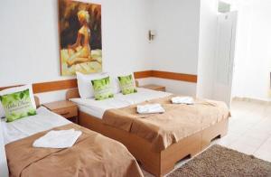 Villa Chesa, Hotely  Corunca - big - 11