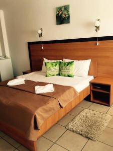 Villa Chesa, Hotely  Corunca - big - 22