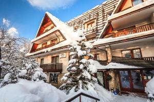 Czarny Potok - Hotel - Zakopane
