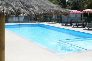 Location gîte, chambres d'hotes Camping Le Ruisseau dans le département Landes 40