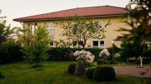 . Hotel Fauna
