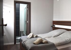 Apartmani Zrenjanin, Гостевые дома  Зренянин - big - 52