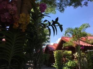 Hua Hin Lap Lae Resort - Hnōhngkē
