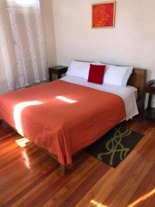 Casa Ryan - Accommodation - Santiago