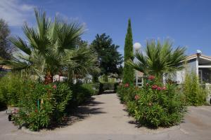 Location gîte, chambres d'hotes Camping Hameau Des Cannisses dans le département Aude 11