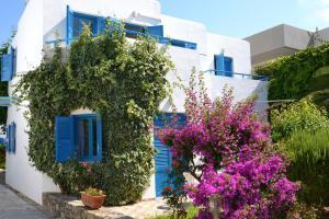 Hostels e Albergues - Galeana Beach Hotel