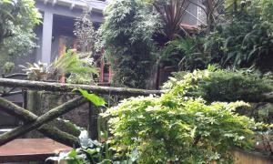 King Fern Cottage, Lodges  Nuwara Eliya - big - 50
