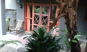 King Fern Cottage, Lodges  Nuwara Eliya - big - 52