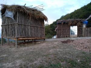 Camping Dubovaya Roscha - Osmanyurt