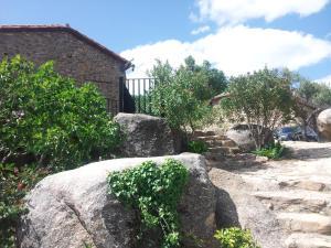 Albergue El Solitario, Ferienhöfe  Baños de Montemayor - big - 42