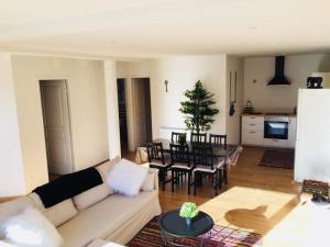 LE COZY DU CAPCIR - Apartment - Formiguères