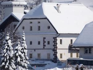 Apartments Možinetova hiša