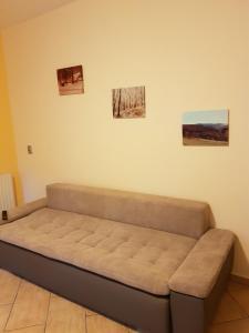 Apartament Wojtek