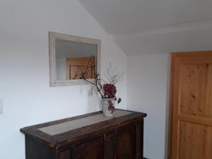 Ferienwohnung Grimmingblick - Apartment - Bad Mitterndorf