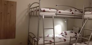 hostel52