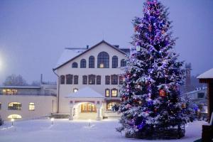 TsarGrad Hotel - Yenino