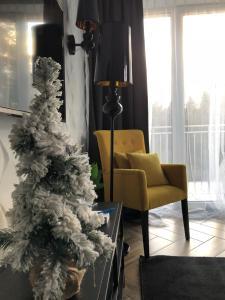 Sauna Apartment No 1 Leśny nad Zalewem z Garażem oraz możliwością śniadań za dodatkową opłatą