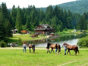 Hotel Koliba pri jazere Horná Lehota Slovacia