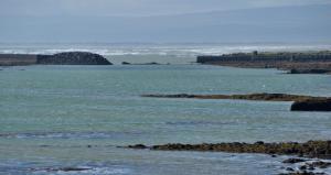 Sea Side Cottages - Reykjavík