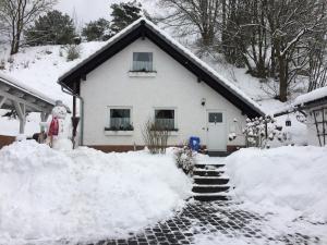 Jakobs Hütte, Dovolenkové domy  Bad Berleburg - big - 45