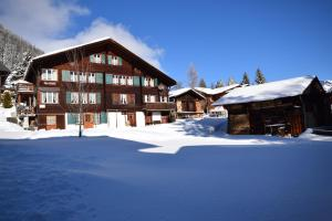 Chalet Bim Chilchli - Apartment - Mürren