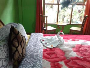 King Fern Cottage, Lodges  Nuwara Eliya - big - 45