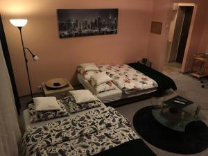 Apartament Skrzeka 8