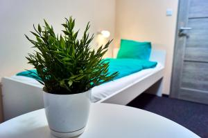 Apart Rooms City Centre - Warsaw