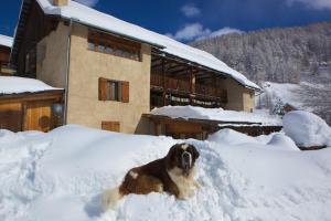 Location gîte, chambres d'hotes Le Chalet Viso dans le département Hautes alpes 5