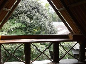 King Fern Cottage, Lodges  Nuwara Eliya - big - 28