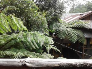 King Fern Cottage, Lodges  Nuwara Eliya - big - 25