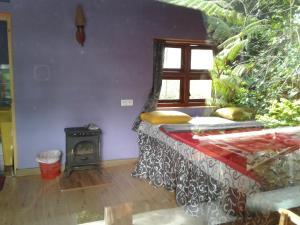 King Fern Cottage, Turistaházak  Nuwara Eliya - big - 21
