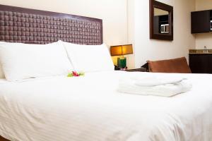 Hotel & Suites Rincon del Valle San José