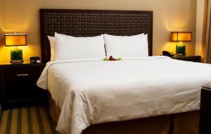 Hotel & Suites Rincon del Valle