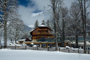 BIO Villa ramsauhof - Accommodation - Ramsau am Dachstein
