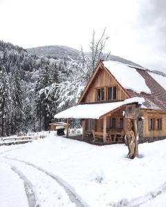 Dolomiti Village - Zovello