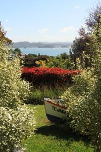 obrázek - Gulls View House