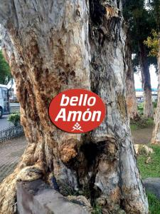 Bello Amón