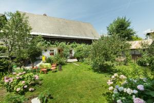 House, Garden and a Green Cat