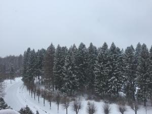 Zvenigorodsky Resort - Islavskoye
