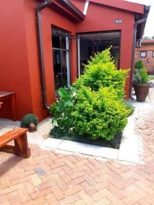 Niilo's Guesthouse, Penzióny  Rundu - big - 3