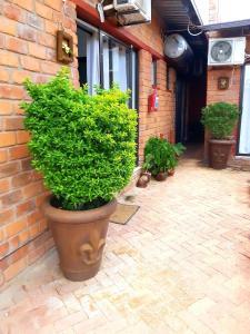 Niilo's Guesthouse, Penzióny  Rundu - big - 9