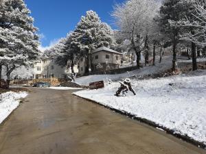 Shkreli Hotel & Camp - Burrel