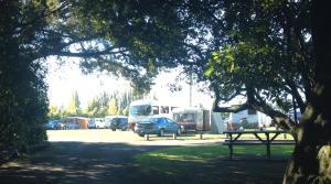 Greytown Campground, Holiday parks - Greytown