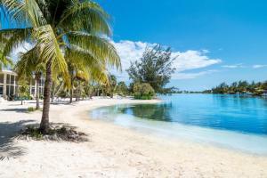 Seaside Dreams Island House by Cayman Villas - Hutland