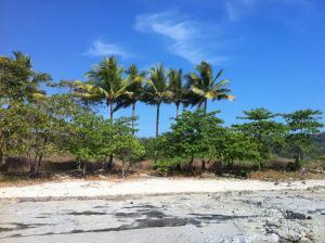 Soleadas Homes, Chaty v prírode  Pláž Santa Teresa - big - 28