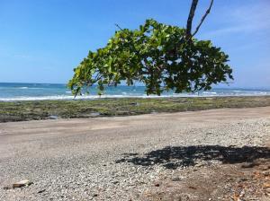 Soleadas Homes, Chaty v prírode  Pláž Santa Teresa - big - 29