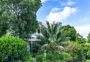 Aataren Norfolk Island Villas, Vily  Burnt Pine - big - 40